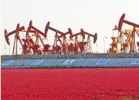 Petrochemical Enterprises